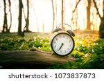alarm clock on a wooden branch...   Shutterstock . vector #1073837873
