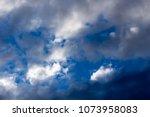 white  grey heavy fluffy ... | Shutterstock . vector #1073958083