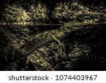 small wild crocodile  detail of ... | Shutterstock . vector #1074403967