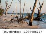 sunset stroll on the beach   Shutterstock . vector #1074456137