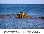 rocky mediterranean coast in...   Shutterstock . vector #1074479687