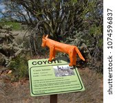 Small photo of Wooden Carlos Coyote on coyote sign