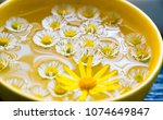 Small photo of Bright shiny chamomile flowers float in a yellow wide mug. A wide yellow cup of chamomile tea with flowers floating on the surface. Close up