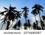 the beauty of nature during... | Shutterstock . vector #1074680087