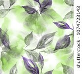 watercolor illustration. floral ... | Shutterstock . vector #1074723143