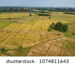 aerial view of yellow rice... | Shutterstock . vector #1074811643