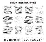 birch tree bark stains ... | Shutterstock .eps vector #1074833357