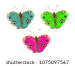 a close up of beauty  butterfly ... | Shutterstock . vector #1075097567