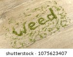 "word ""weed"" built of narcotic... 
