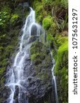 Small photo of Beautiful trailside waterfall over moss covered rocks at Striped Peak Trail in Port Angeles, Washington