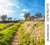beautiful landscape  banyoles ... | Shutterstock . vector #1075782773