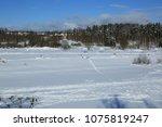 winter landscape russia moscow... | Shutterstock . vector #1075819247