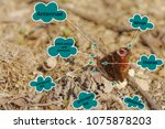 butterfly construction.... | Shutterstock . vector #1075878203