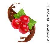 red currant in splash of brown...   Shutterstock .eps vector #1075998113