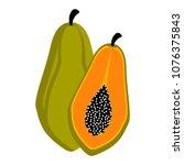 isolated papaya fruit   Shutterstock .eps vector #1076375843