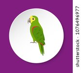 amazon parrot icon in flat... | Shutterstock .eps vector #1076496977