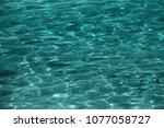 adriatic sea background in... | Shutterstock . vector #1077058727
