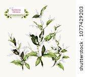 hand drawn illustration of... | Shutterstock .eps vector #1077429203