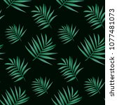 vector palm frond. tropical... | Shutterstock .eps vector #1077481073