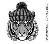 wild tiger cool animal wearing... | Shutterstock .eps vector #1077691013