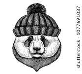bamboo bear. panda. cool animal ... | Shutterstock .eps vector #1077691037