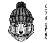 wolf dog cool animal wearing... | Shutterstock .eps vector #1077691193