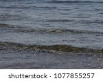 the sea waves | Shutterstock . vector #1077855257