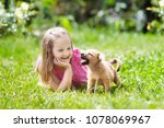 kids play with cute little... | Shutterstock . vector #1078069967