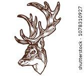 deer witn antler portrait... | Shutterstock .eps vector #1078310927
