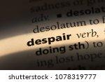 despair word in a dictionary.... | Shutterstock . vector #1078319777