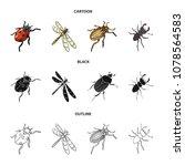 arthropods insect ladybird ... | Shutterstock .eps vector #1078564583