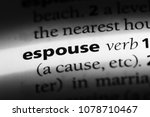 Small photo of espouse word in a dictionary. espouse concept