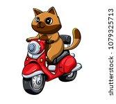 cat rides scooter | Shutterstock . vector #1079325713