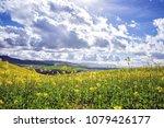 scenic view of field of... | Shutterstock . vector #1079426177
