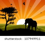 Africa Sunset - Silhouette of Elephant Standing in the Sunset and approaching three - stock photo