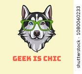 siberian husky nerd. sart... | Shutterstock .eps vector #1080060233