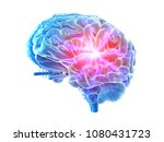 3d rendered  medically accurate ... | Shutterstock . vector #1080431723