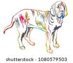 Colorful Contour Decorative...
