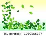 environmental conservation...   Shutterstock .eps vector #1080666377