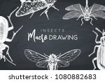 vector background with hand... | Shutterstock .eps vector #1080882683
