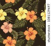 flowers hibiscus yellow orange...   Shutterstock .eps vector #1081129697