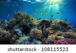 beautiful view of sea life | Shutterstock . vector #108115523