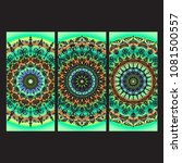 beautiful hand drawn indian... | Shutterstock . vector #1081500557