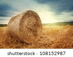 Round Bales Of Straw In The...
