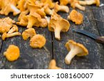 fresh chanterelle mushrooms on...   Shutterstock . vector #108160007