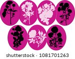 illustration with roses... | Shutterstock .eps vector #1081701263