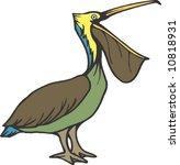 pelican | Shutterstock .eps vector #10818931