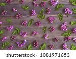 Floral Background With Lilac...