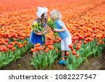 children in tulip flower field... | Shutterstock . vector #1082227547