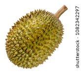 durian fruit from thailand... | Shutterstock . vector #1082342297